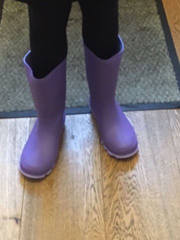 Wellies from Mountain Warehouse