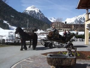 Wiesenhof carriage ride